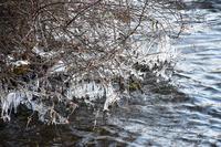榛名湖の写真・動画_image_247183