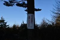鬼押出し 浅間園の写真・動画_image_247258