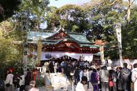 來宮神社の写真・動画_image_247405