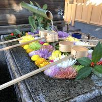 勝林寺の写真・動画_image_247582