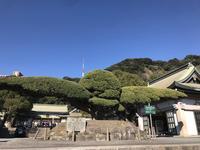 照国神社の写真・動画_image_249397