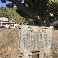 照国神社の写真・動画_image_249398