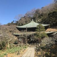 瑞泉寺の写真・動画_image_250401