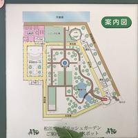 松江イングリッシュガーデンの写真・動画_image_250523