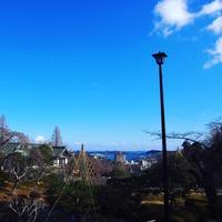 志波彦神社の写真・動画_image_251029
