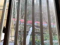 NARAYA CAFE(ならや)の写真・動画_image_251585