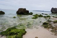 瀬底ビーチの写真・動画_image_252721