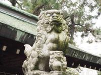安江八幡宮の写真・動画_image_254281