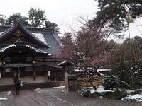 尾山神社の写真・動画_image_255259