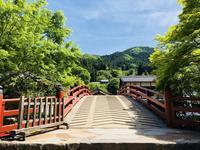 室生寺の写真・動画_image_256335