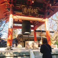 水澤観世音(水澤寺)の写真・動画_image_259273