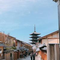 高台寺の写真・動画_image_260608