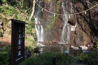 玉簾神社の写真・動画_image_260950