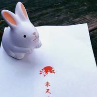 岡崎神社の写真・動画_image_261354