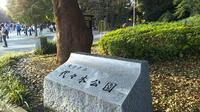 代々木公園の写真・動画_image_262006