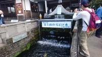 忍野八海の写真・動画_image_262441
