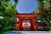 青島の写真・動画_image_264299