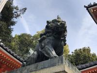 八坂神社の写真・動画_image_266485