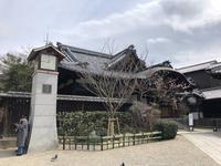 八坂神社の写真・動画_image_266486