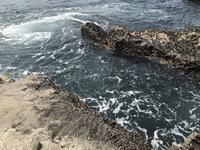 江の島の写真・動画_image_268661