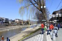 宮川朝市の写真・動画_image_269351