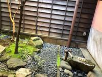 お茶屋文化館の写真・動画_image_270913