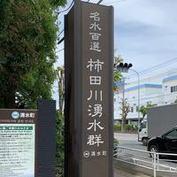 柿田川公園の写真・動画_image_275689