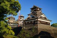 熊本城の写真・動画_image_277268