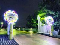 横浜・八景島シーパラダイスの写真・動画_image_278011
