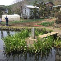 忍野八海の写真・動画_image_279487