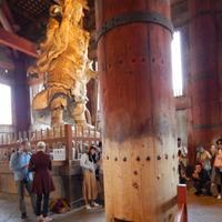 東大寺の写真・動画_image_279665