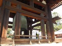 東大寺の写真・動画_image_279739