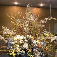 金沢市老舗記念館の写真・動画_image_280799