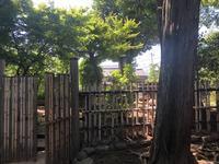 稲付城跡の写真・動画_image_281211