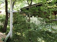 cafe Karin 果林(カリン)の写真・動画_image_281327