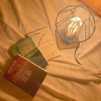 泊まれる本屋 BOOK AND BED TOKYO 京都店の写真・動画_image_282221