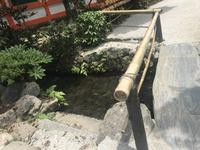 上賀茂神社(賀茂別雷神社)の写真・動画_image_282286