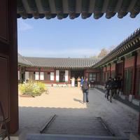 景福宮(Gyeongbokgung)の写真・動画_image_286591