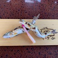 長良川鵜飼観覧船の写真・動画_image_289753