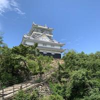岐阜城の写真・動画_image_289764