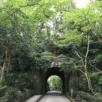 鎌倉文学館の写真・動画_image_291268