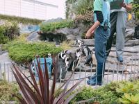 サンシャイン水族館の写真・動画_image_294072