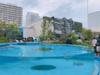 サンシャイン水族館の写真・動画_image_294073