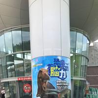 福井県立恐竜博物館の写真・動画_image_294177