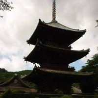 三井寺の写真・動画_image_295205