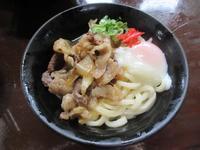 がいな製麺所の写真・動画_image_295815