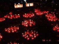 江の島シーキャンドルの写真・動画_image_301158