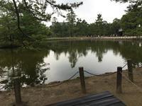 鏡池の写真・動画_image_302050