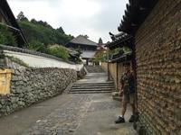 左大仏殿道 石碑の写真・動画_image_302067
