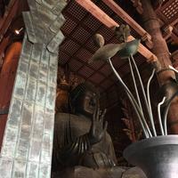東大寺金堂(大仏殿)の写真・動画_image_302084